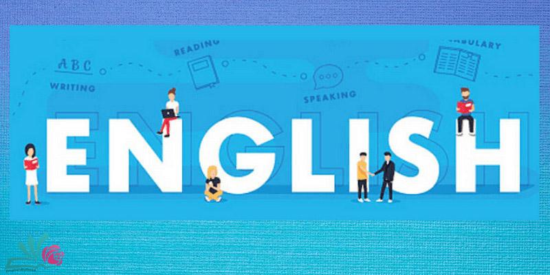 جنسیت و شمار در انگلیسی